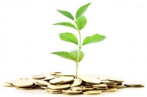 Investimenti isole canarie
